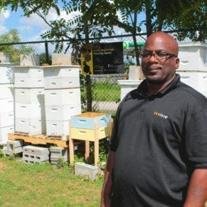 Man with bee hives